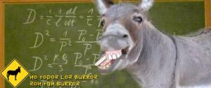 No todos los burros son tan burros
