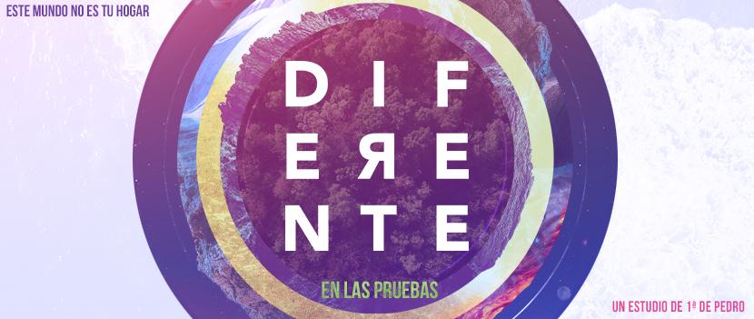 DIF-Web-1